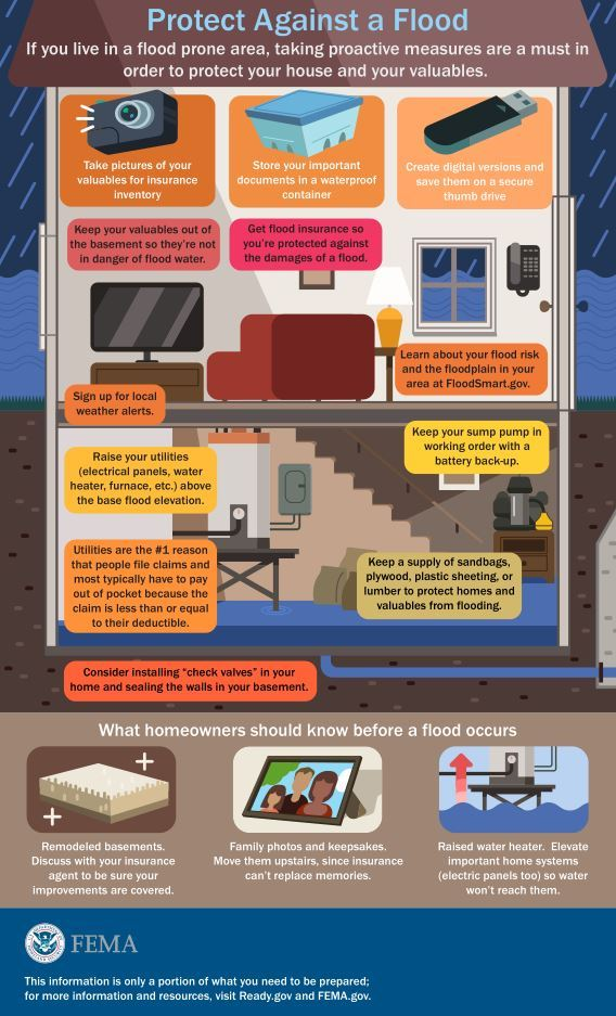 Basement Flood Infographic
