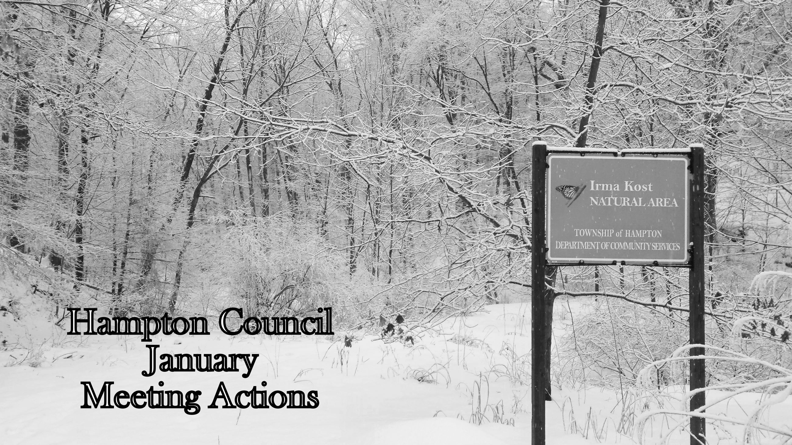 Council January Actions